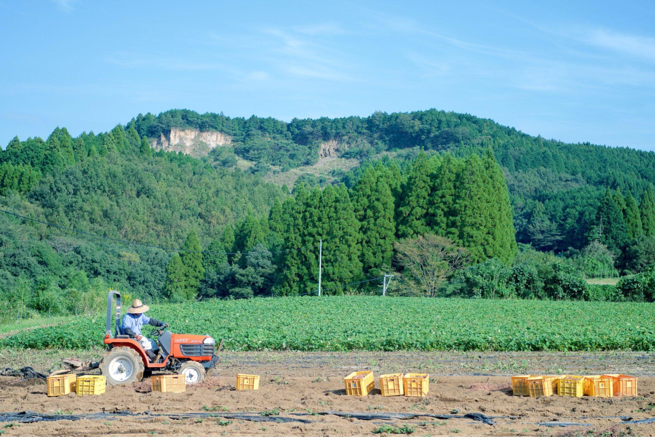 壮大な山を背景にトラクターで畑を耕す人の画像